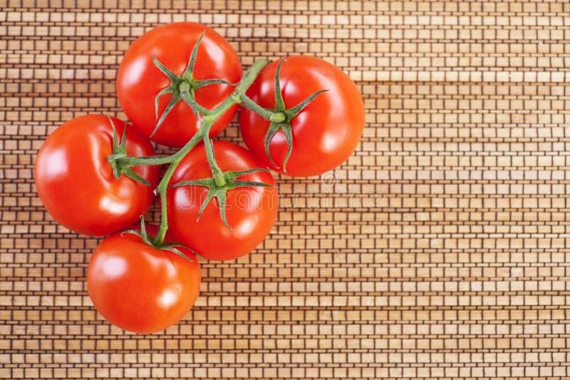 хворостина томатов крупного плана 5 красная стоковое изображение