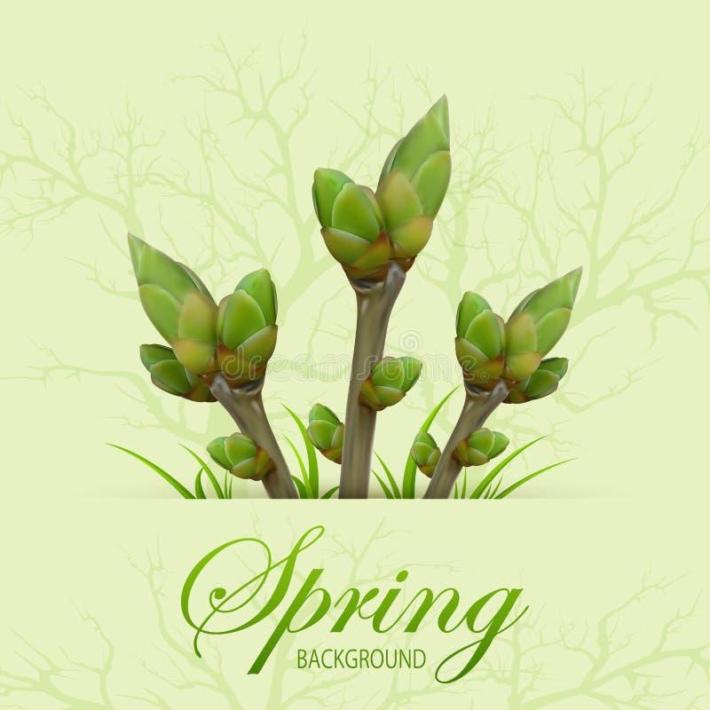 3 хворостины весны иллюстрация штока