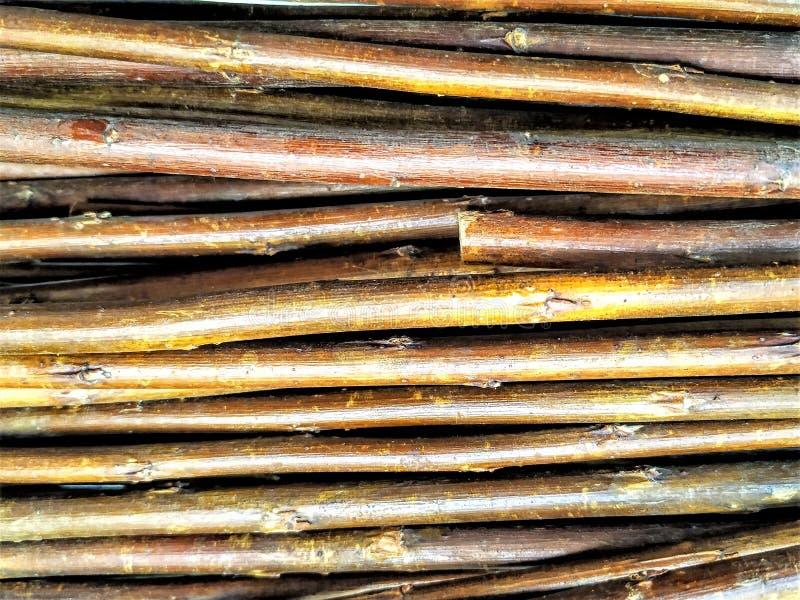 Хворостины, ветви дерева, отсутствие листьев Штабелированный совместно, ровный, коричневый стоковая фотография rf