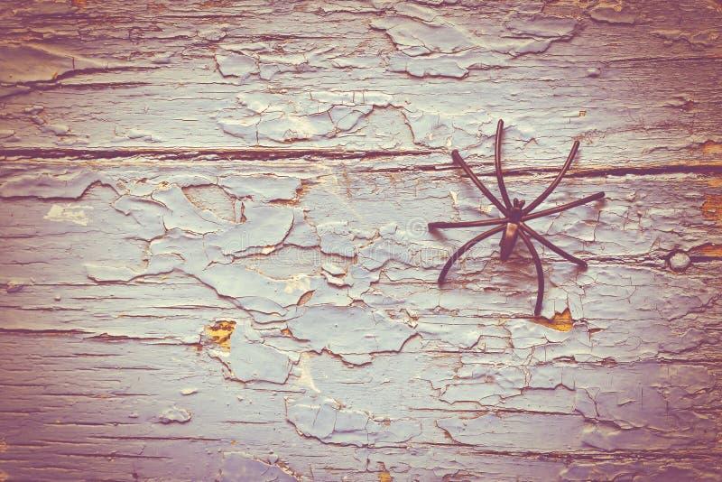 Хеллоуин, черный паук, тайна, деревянная предпосылка стоковые изображения