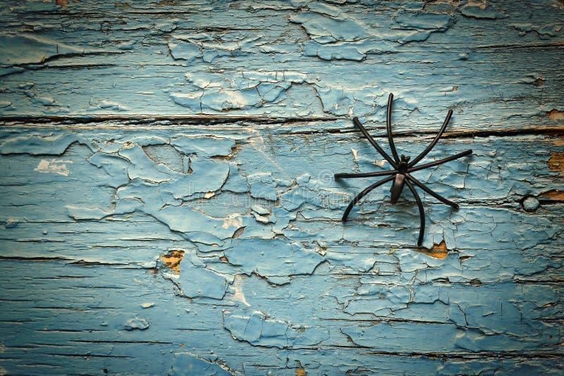 Хеллоуин, черный паук, тайна, космос экземпляра, взгляд сверху стоковая фотография rf