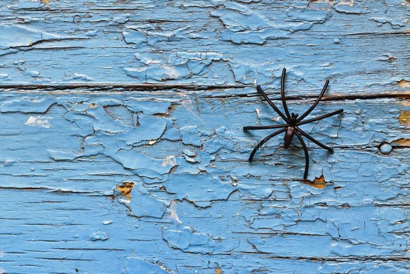 Хеллоуин, черный паук, тайна, космос экземпляра, взгляд сверху стоковое изображение