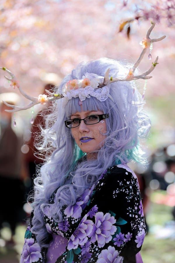 Хельсинки, Roihuvuori, Финляндия 05/21/2017, HANAMI - фестиваль когда цветене вишневых деревьев Событие со стилем Японии одело лю стоковые изображения rf