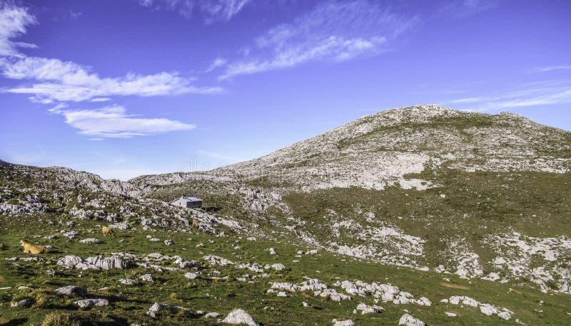 Хижина Refugio Vega de Ario в области Picos de Европе, Астурии, Испании стоковые изображения rf