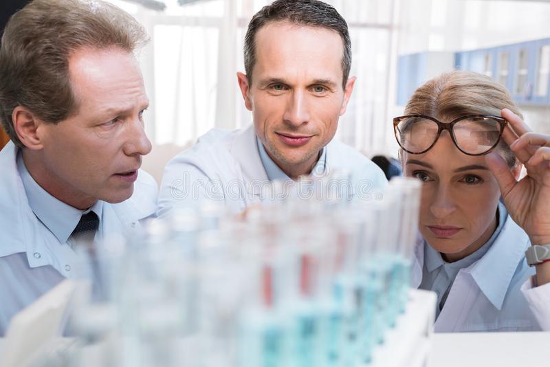 Химики с пробирками стоковые изображения