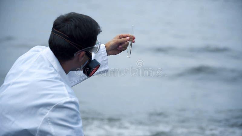 Химик беря проба воды, загрязнение океана водя к экологической катастрофе стоковое изображение