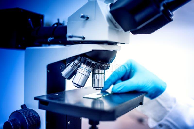 Химик и образцы с перчатками микроскопа и резины Медицинский химик в фармацевтический рассматривать поля стоковое изображение
