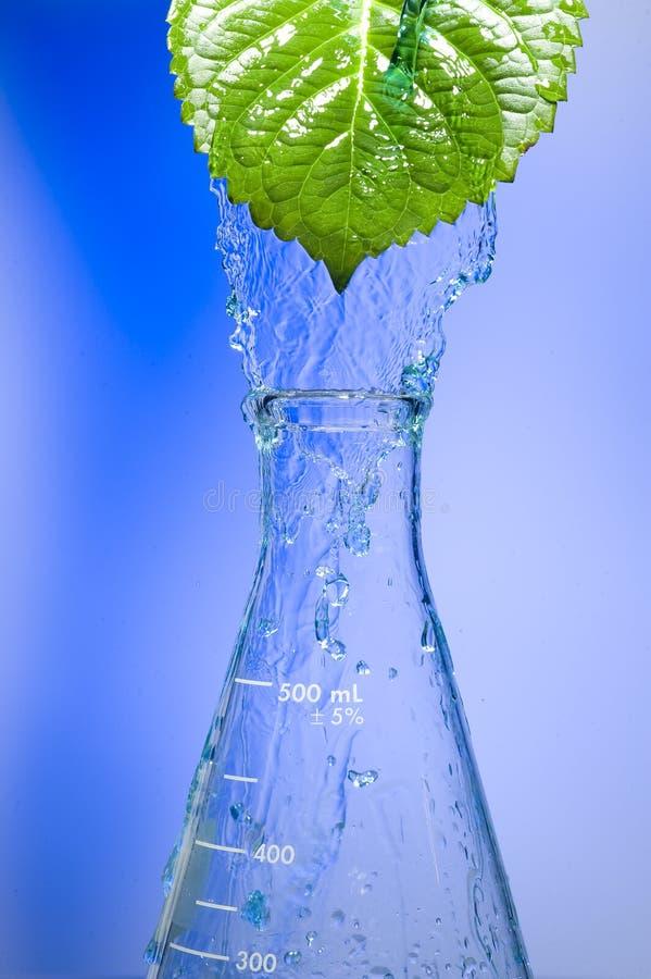 Химическая пробирка стоковая фотография rf