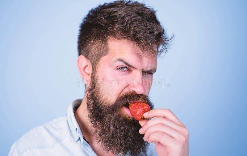 Хипстер красивой строгой стороны человека сексуальный с длинной клубникой попытки бороды Гастрономическое удовольствие Концепция  стоковое изображение rf