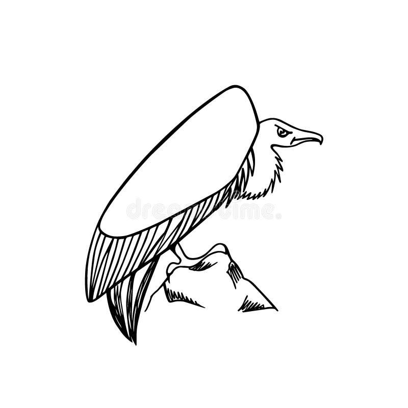 Хищник нарисованный рукой бесплатная иллюстрация