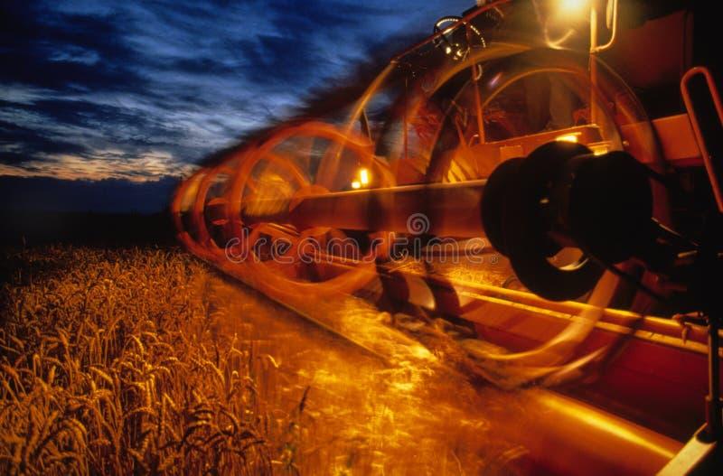 хлебоуборка стоковое изображение
