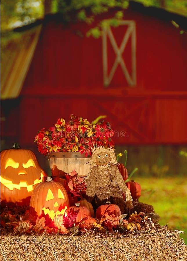 хлебоуборка halloween стоковое фото