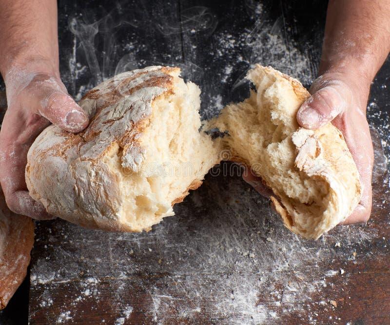 Хлеб мужских рук взламывая испеченный в половине стоковое изображение rf