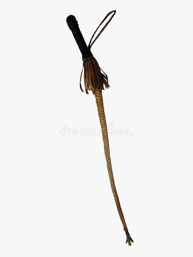 хлыст стоковое изображение