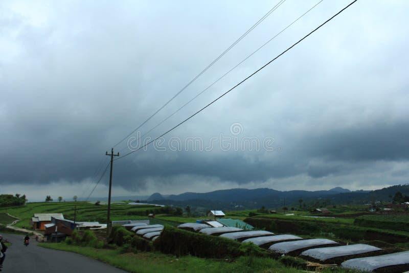 Хмурый аграрный ландшафт фермы стоковое фото