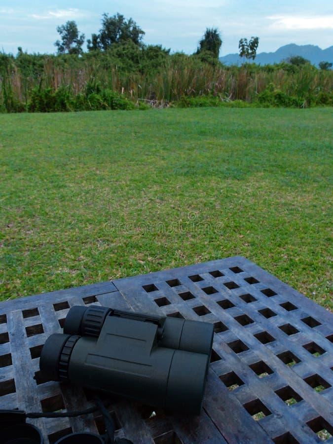 Хобби природы наблюдать птицы напольное стоковые фотографии rf
