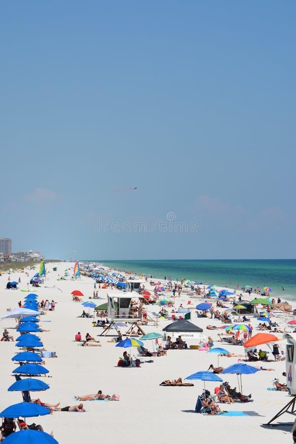 Ходоки пляжа на пляже Pensacola в Escambia County, Флориде на Мексиканском заливе, США стоковые изображения rf