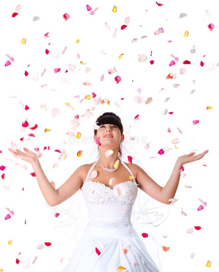 ходы розы лепестков невесты милые стоковое изображение rf