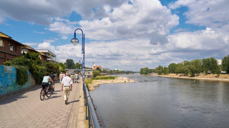 Ходячие на набережной на реке Эльба в Магдебурге стоковые изображения