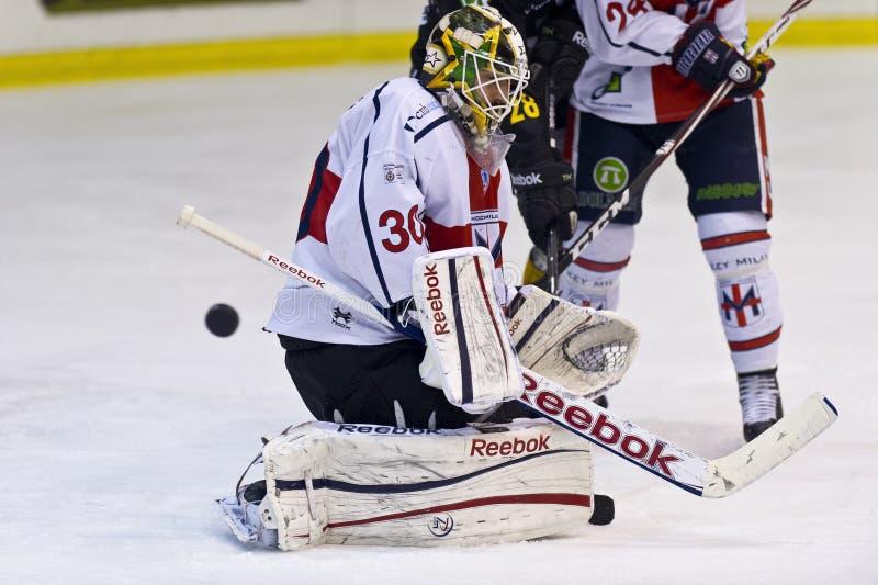 Хоккей на льде стоковые фотографии rf