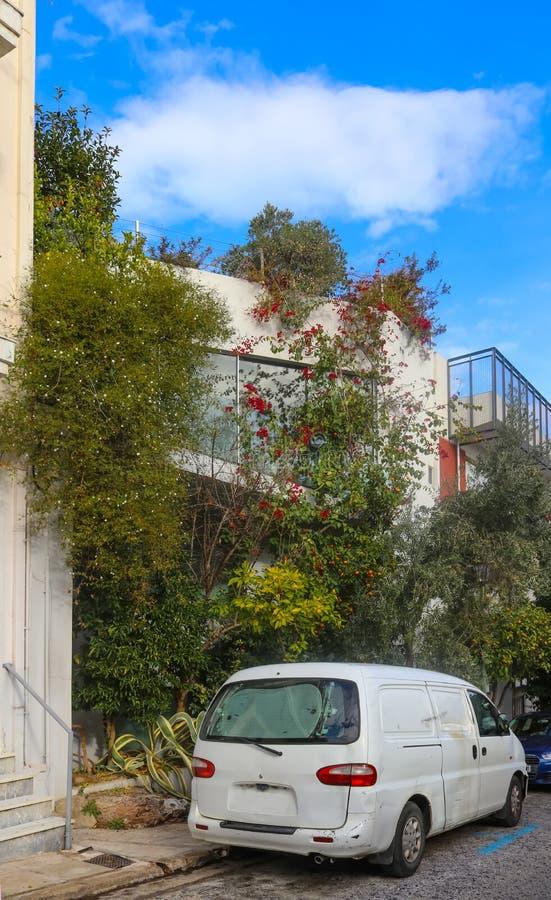 Холмистый переулок в районе Thiseio Афин Греции около акрополя при цветя лозы растя вверх стены и оранжевые деревья вперед стоковая фотография rf