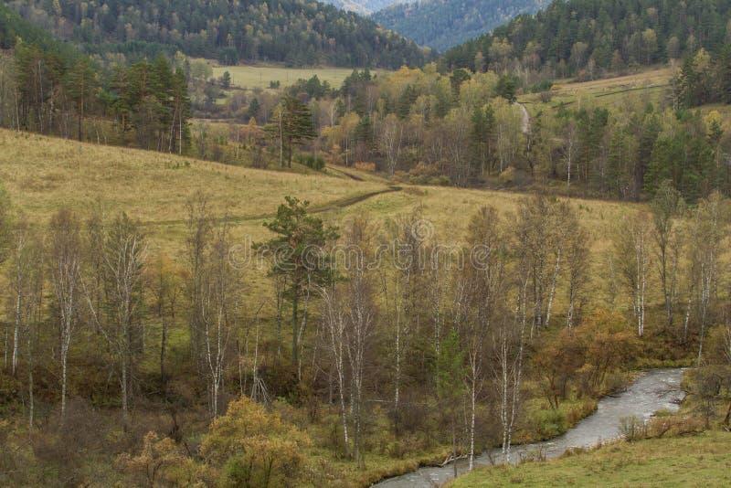 Холмы горы Altai Путешествие к сердцу Сибиря стоковое фото