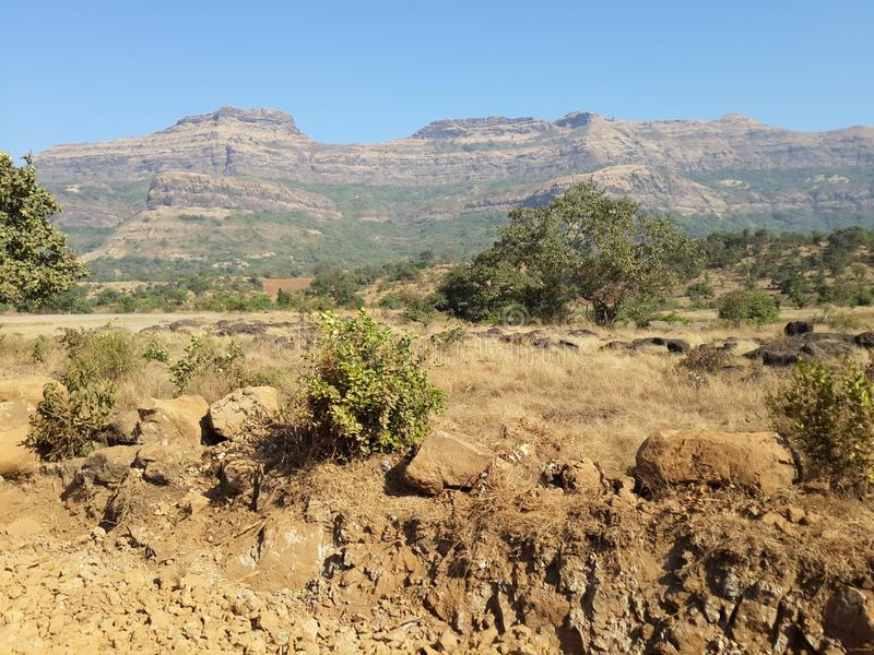 Холмы и горная цепь, взгляд ландшафта растительности деревьев стоковое изображение rf