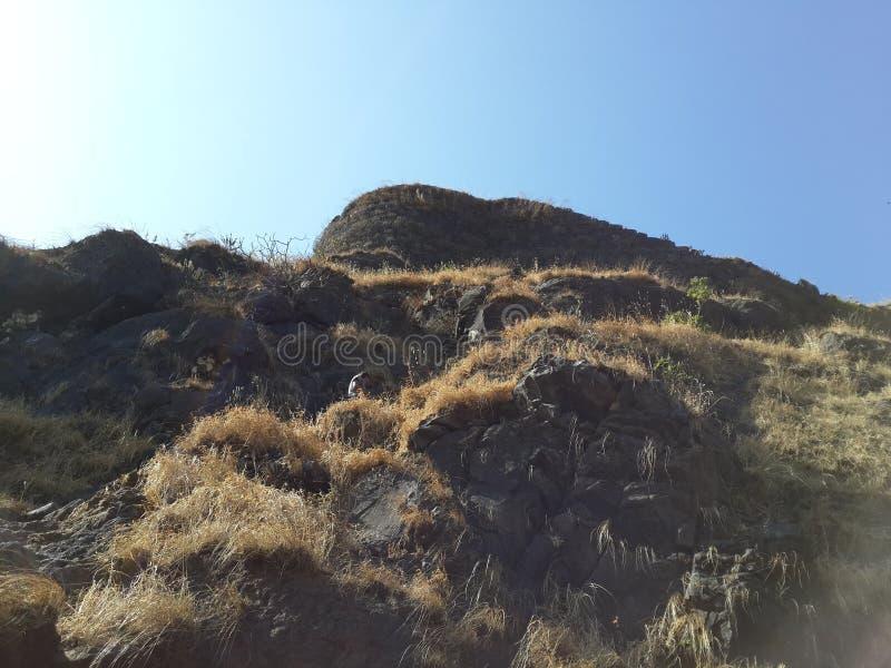 Холмы и горная цепь, взгляд ландшафта растительности деревьев стоковое изображение