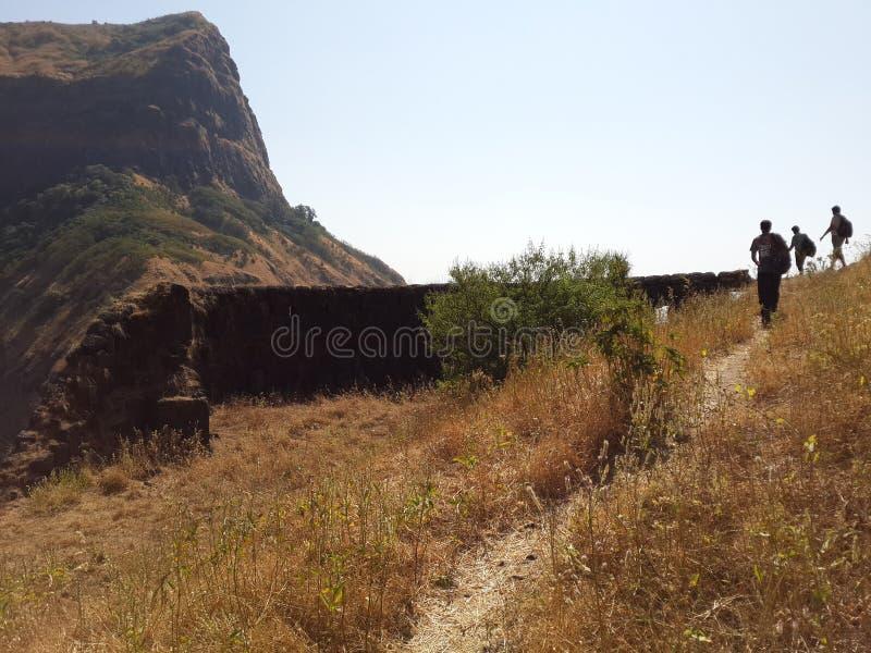 Холмы и горная цепь, взгляд ландшафта растительности деревьев стоковые фото