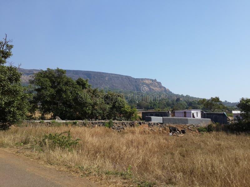 Холмы и горная цепь, взгляд ландшафта растительности деревьев стоковое фото rf