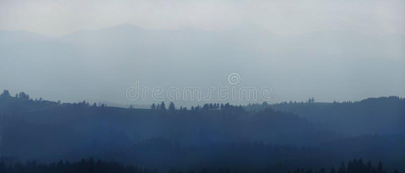 Холмы и деревья стоковое фото rf