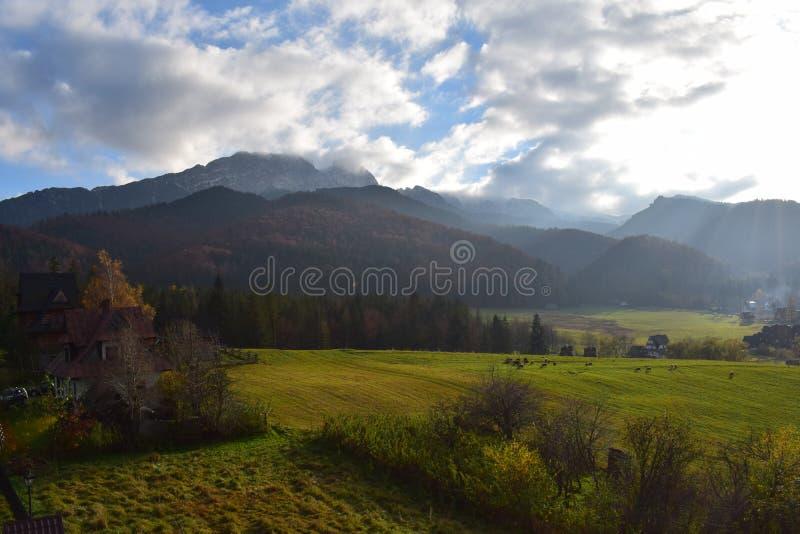 Холмы и зеленое поле с облаками и солнечностью стоковое фото
