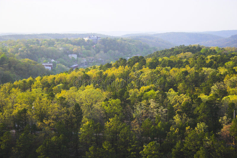 холмы лесистые стоковые изображения rf