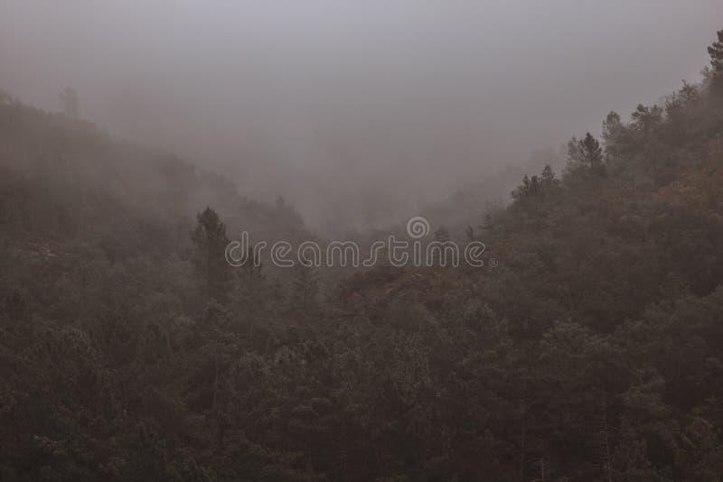 Холмы призрака стоковая фотография rf