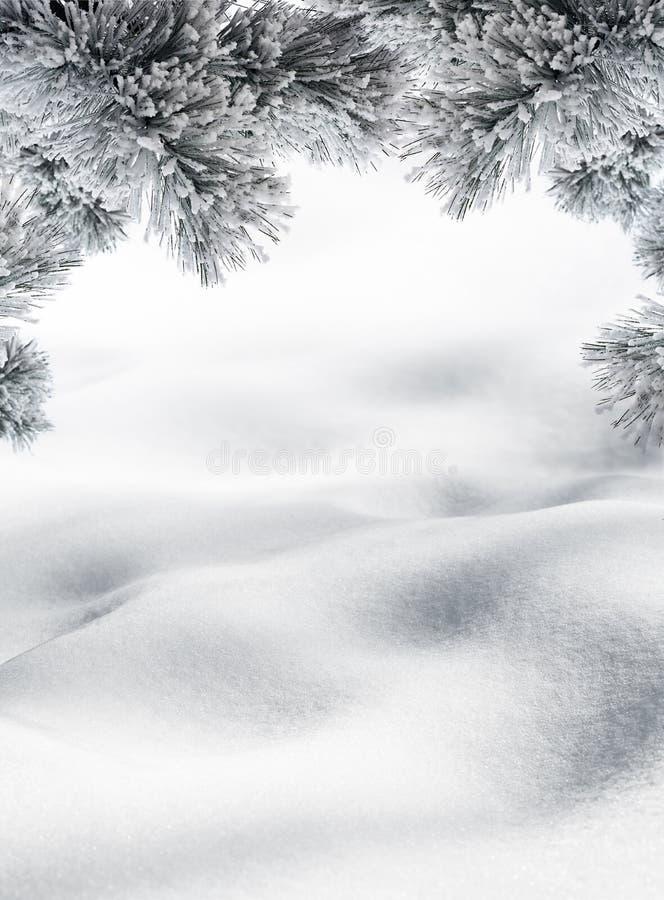 Холмы снега для зимы или предпосылки рождества стоковые изображения