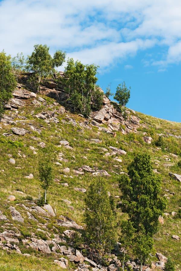 Холмы с камнями Altai, южный Сибирь, Россия стоковое фото rf