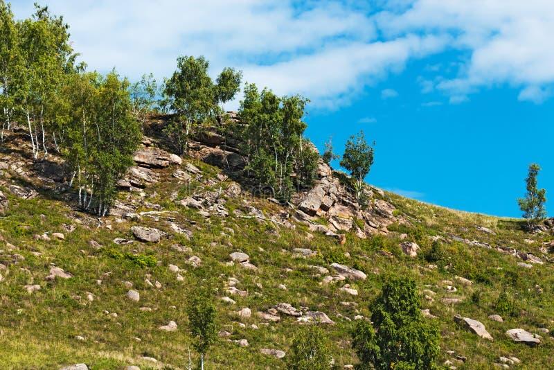 Холмы с камнями Altai, южный Сибирь, Россия стоковая фотография rf