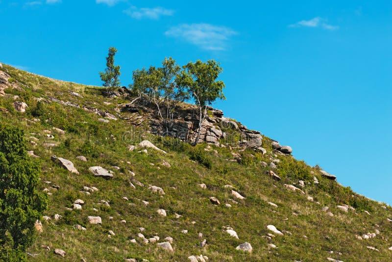 Холмы с камнями Altai, южный Сибирь, Россия стоковые фотографии rf