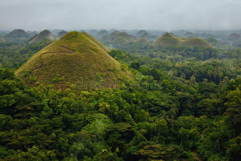 Холмы шоколада, Bohol, Филиппины стоковые фото