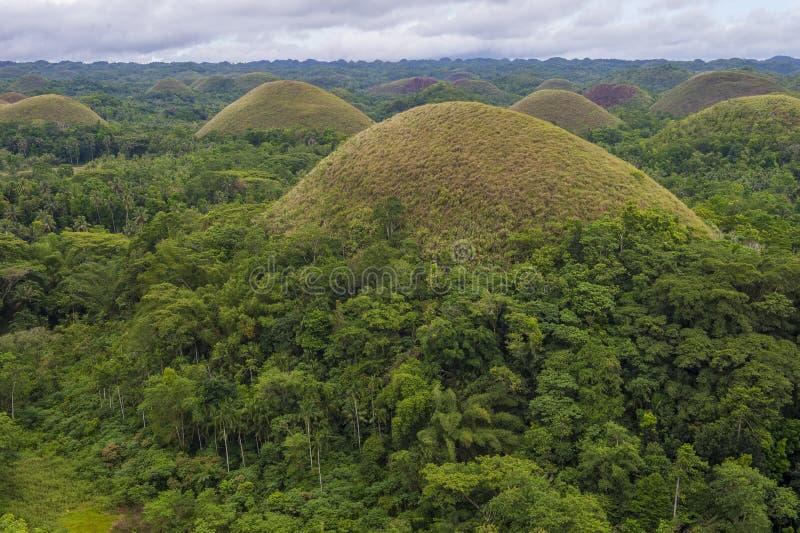 Холмы шоколада, Bohol стоковое фото