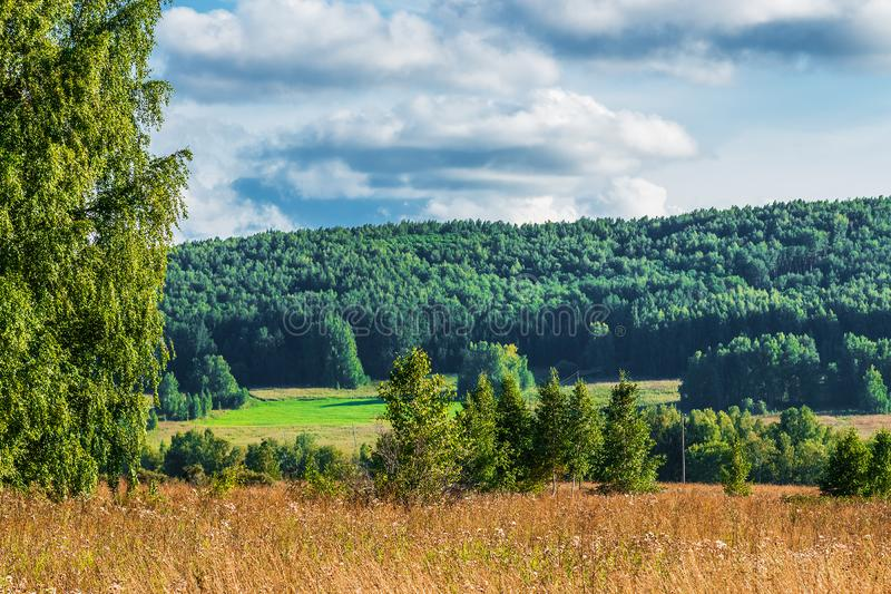Холмы Bugotak Сибирь, Россия стоковые изображения rf