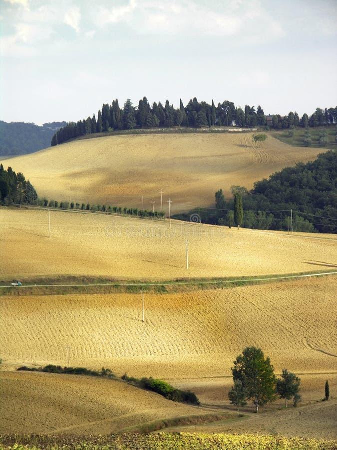 холмы chianti стоковые фотографии rf