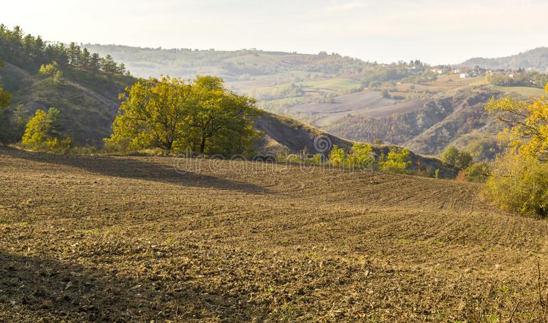 Холмы Oltrepo Pavese стоковое фото
