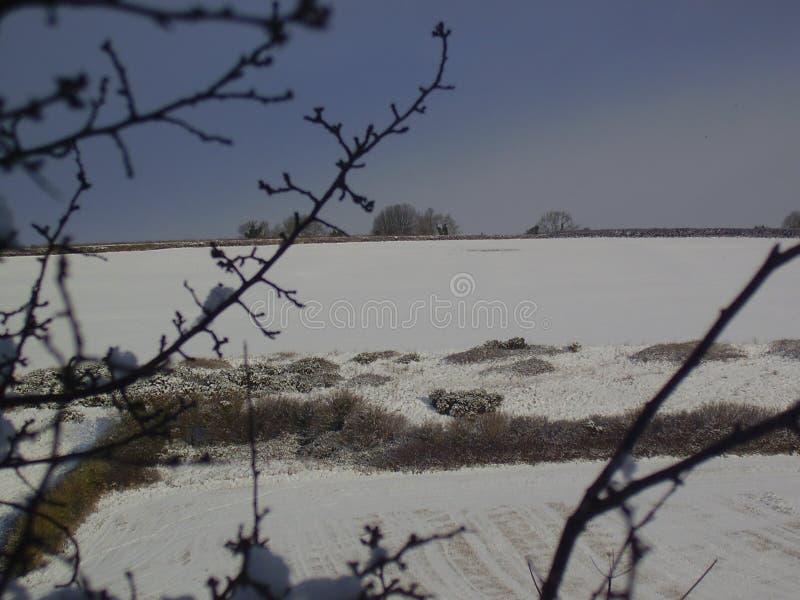 Холмы Snowy в Дорсете стоковые фотографии rf