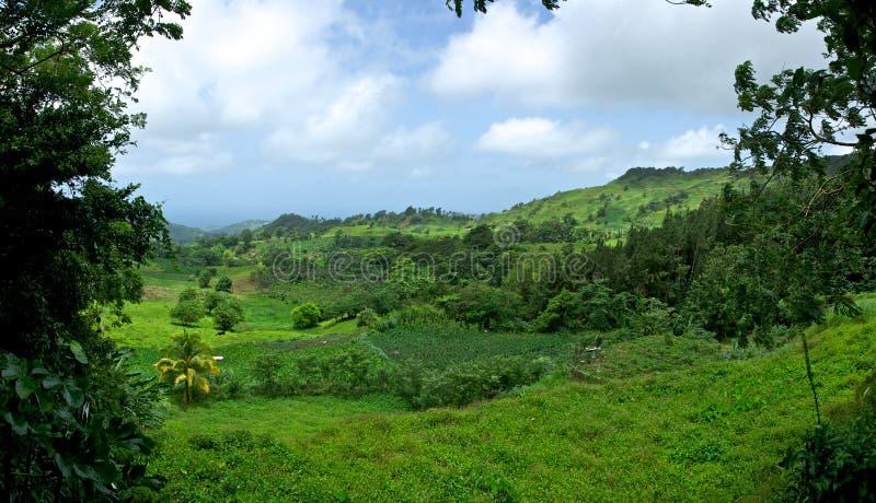 холмы vincentian стоковая фотография