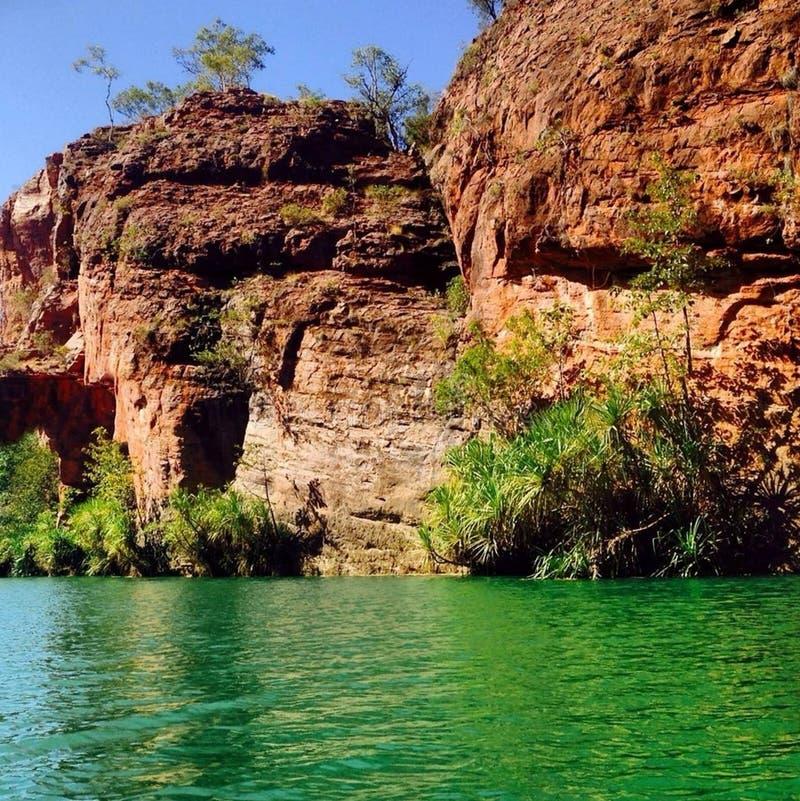 Холм Австралия лужайки стоковые изображения rf