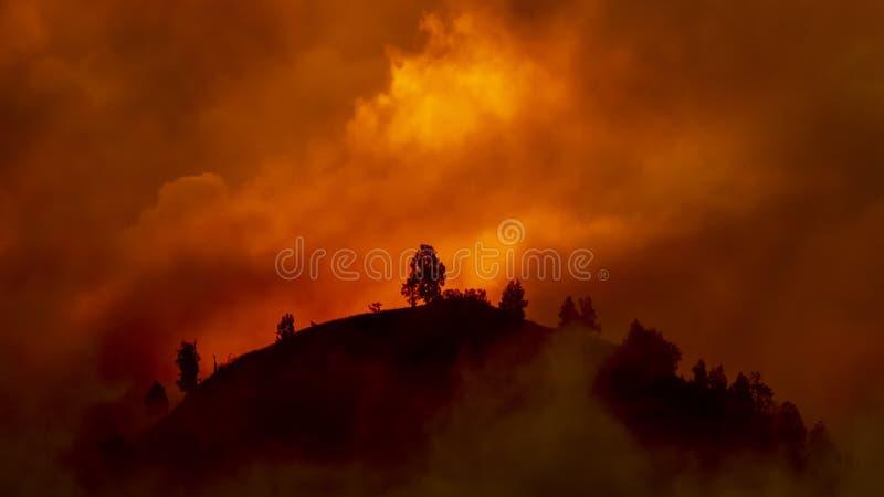 Холм с деревьями около, который нужно сгореть в красном лесном пожаре стоковые фотографии rf