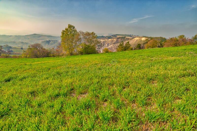 Холм amd неплодородных почв зеленый стоковая фотография