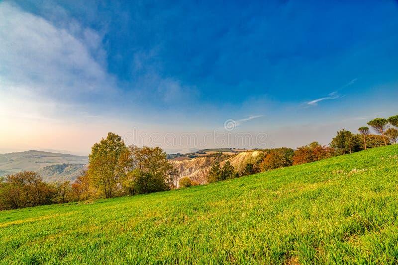 Холм amd неплодородных почв зеленый стоковые изображения rf