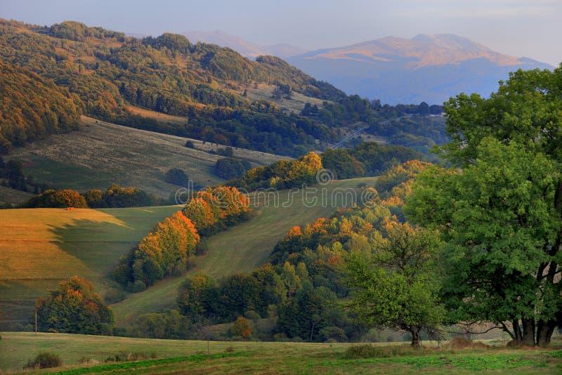 Холм Polonina Carynska и долина Prowcza в горах Bieszczady в национальный парк Bieszczadzki юговосточном †Польши « стоковые фото